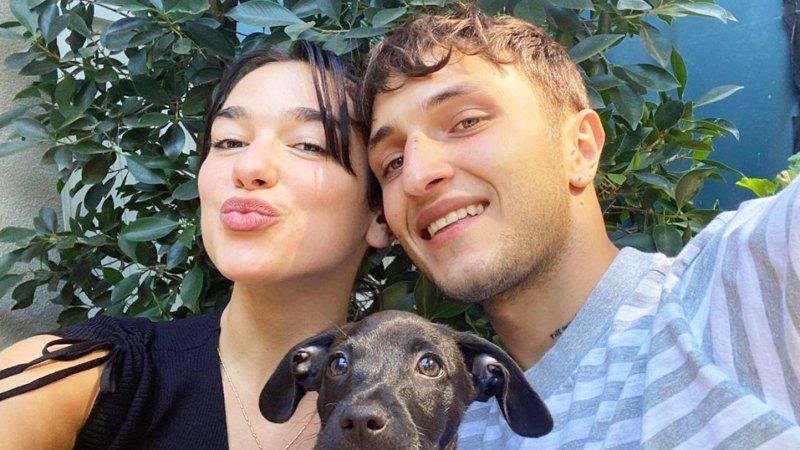 Nick Jonas, Miley Cyrus, Selena Gomez and More! Stars Adopting or Fostering Pups Amid Coronavirus