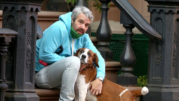 Andy Cohen Reunites With Rescue Dog He Rehomed Last Spring 1