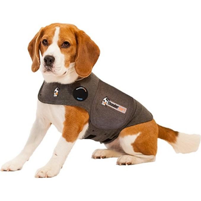 dog-thundershirt