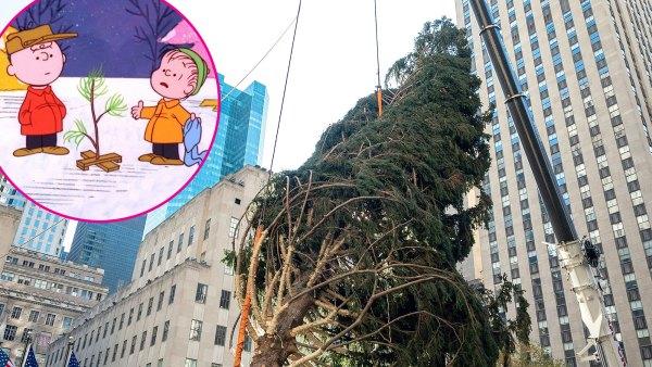 Rockefeller Center Claps Back After 2020 Christmas Tree Goes Viral, Draws Charlie Brown Comparisons