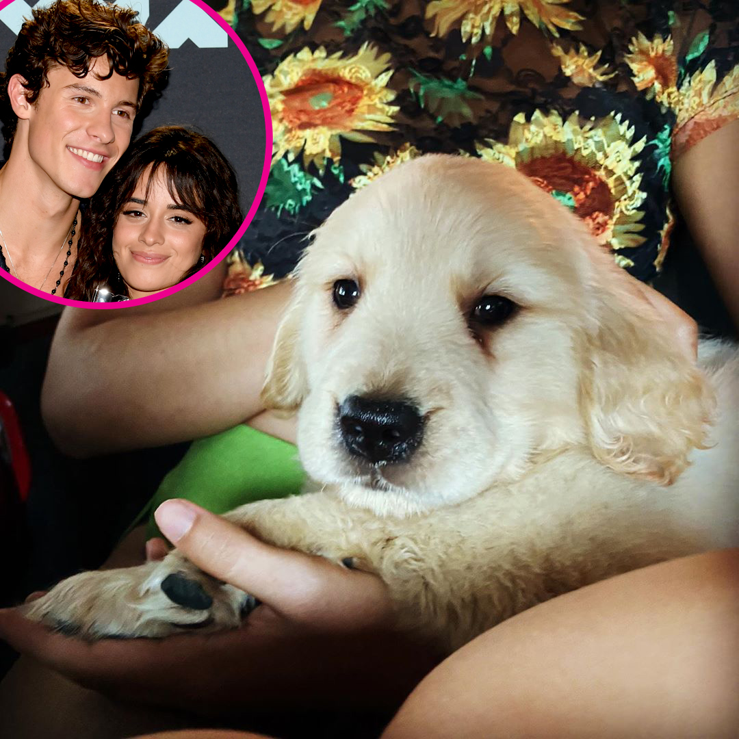 Shawn Mendes and Camila Cabello Add a Puppy to Their Family