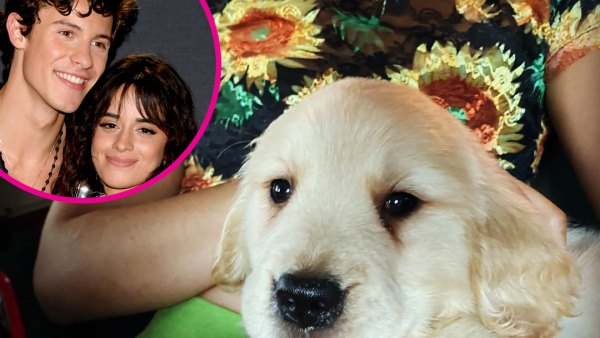 Shawn Mendes and Camila Cabello Relationship Timeline Puppy 1