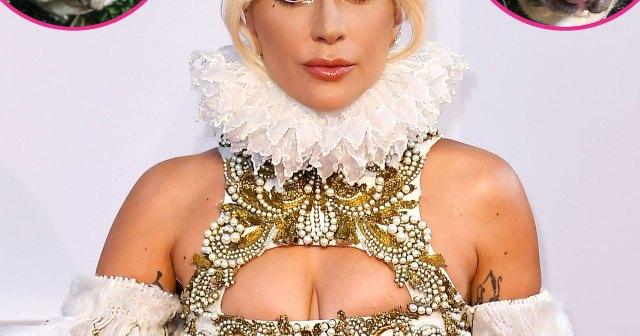 Lady Gaga 'Is Beside Herself' After Dog Walker Shooting, Offering a $500,000 Reward for Return of Beloved Pets.jpg