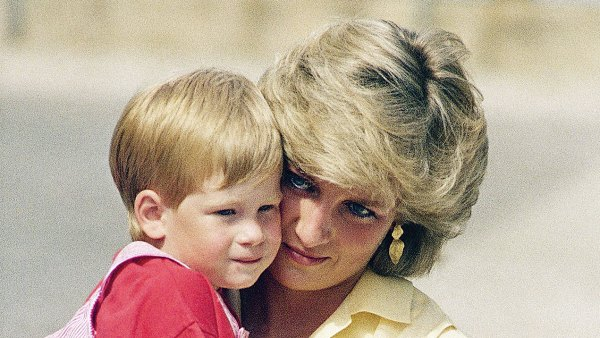 Prince Harry Shares How Late Princess Diana Would Feel About Him Leaving the Royal Family