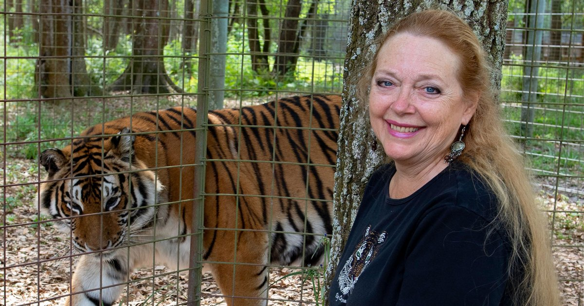 Tiger King's Carole Baskin Launches 'Are You Kitten Me' Apparel to Support Big Cats