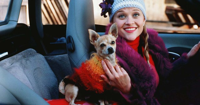 Everything We Know About 'Legally Blonde 3': Who's Returning, Who's Writing the Script and More.jpg