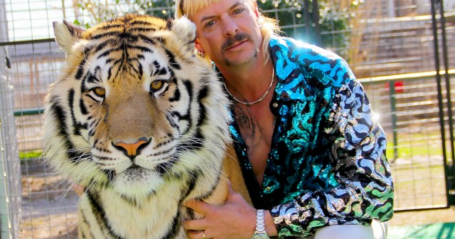 'Tiger King 2' Is Officially Returning To Netflix: All the Details.jpg