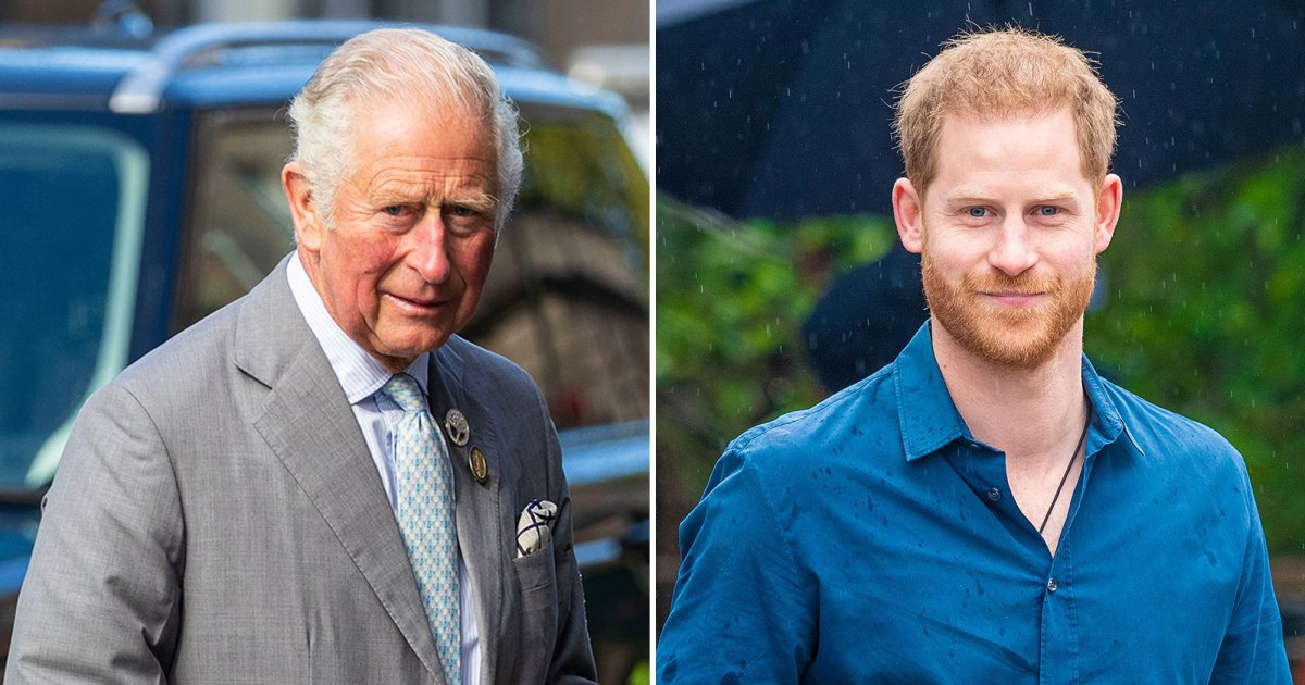 Prince Charles Expects Prince Harry's Book to Put Him in the 'Firing Line,' Royal Expert Claims