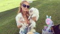 Paris Hilton's Pets