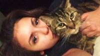 Nina Dobrev cat