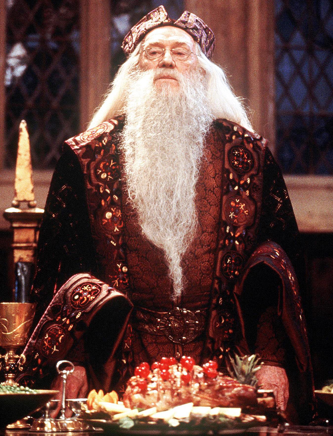 Why Ian Mckellen Passed On Harry Potter S Dumbledore