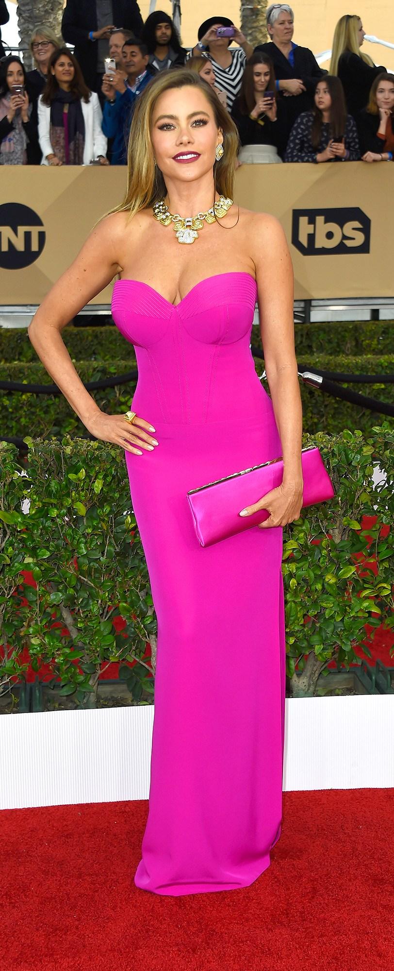 Sofia Vergara SAG Award Dress