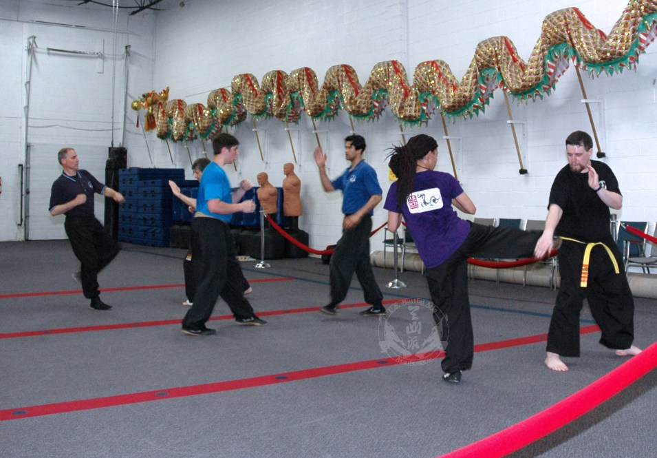 Blocking kicks practice in Adult Kung Fu class at U.S. Martial Arts Academy, Ltd. Timonium Maryland U.S.A.©2015 Maricar Jakubowski www.usmaltd.com 410-561-9882 All rights reserved.