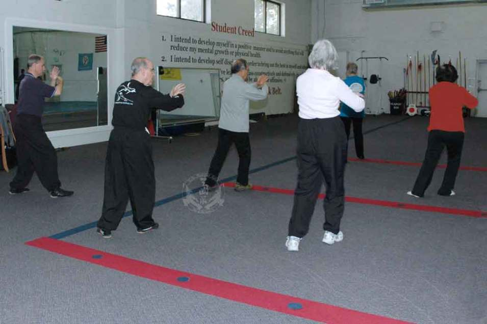 Adult Tai Chi class at U.S. Martial Arts Academy, Ltd. Timonium Maryland U.S.A.©2015 Maricar Jakubowski All rights reserved. No usage allowed in any form without the written consent of the photographer.