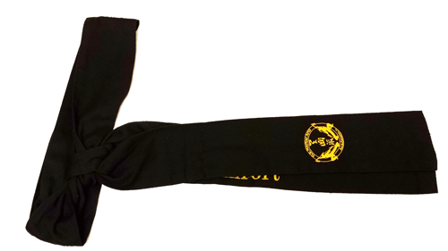US Martial Arts Academy, Ltd's First Degree Black Sash in Tien Shan Pai, a traditional, Northern Chinese Kung Fu style