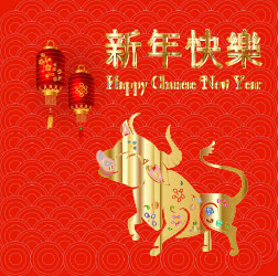 Happy New Year of the Ox 2021 -- gold ox, red Chinese lanterns on a gold circles and red background designed for US Martial Arts Academy Ltd teaching self-defense  and improving fitness focus strength self-discipline balance self-confidence through childrens and adult Kung Fu and adult Tai Chi