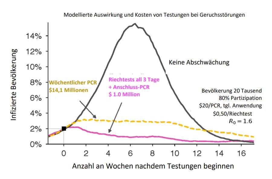 Darstellung im Modell deutet darauf hin, dass ein Riechtest die COVID-Kurve glätten könnte