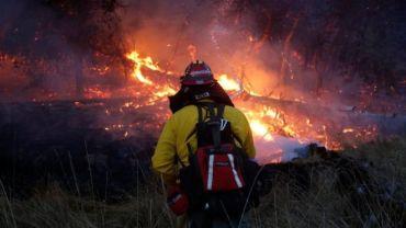 क्यालिफोर्निया जंगल आगो:कम्तीमा चालीसको मृत्यु,एक लाख बढी मानिसहरु विस्थापित