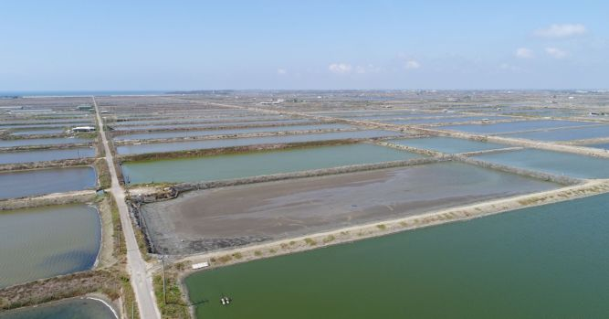 Google is building a solar power project above fishing ponds in Taiwan 2
