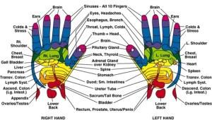 reflexní body - ruce aj