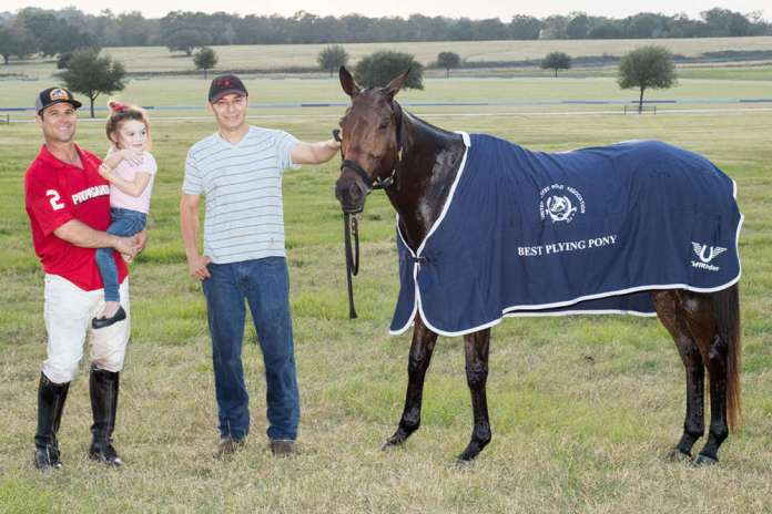 Best Playing Pony: Shrimps, played and owned by Nick Cifuni, pictured with his daughter Charlotte.