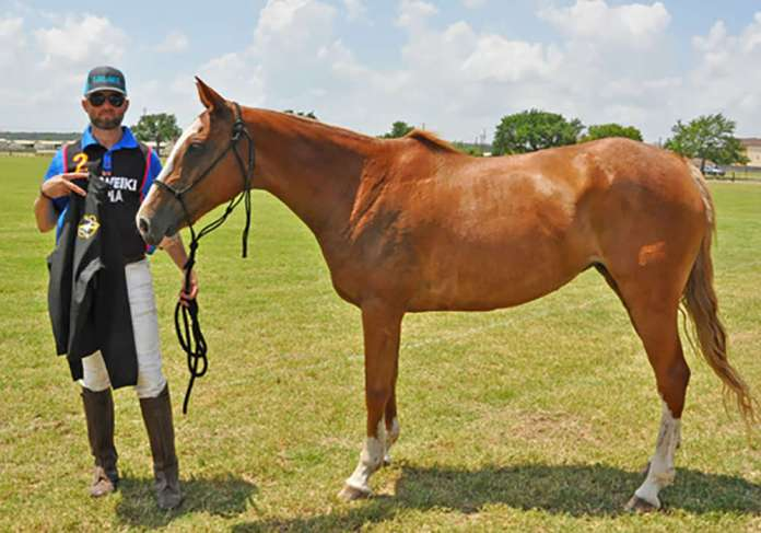 Best Playing Pony was awarded to Nugget, owned and ridden by Trey Crea. ©Susana Baird