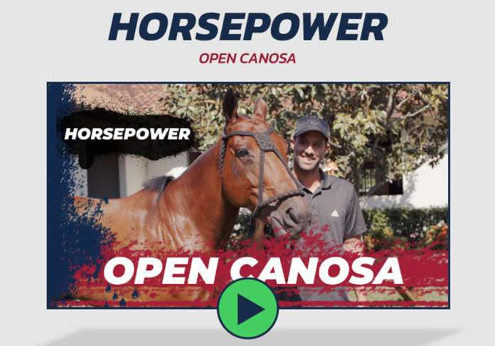 Horsepower- Open Canosa.