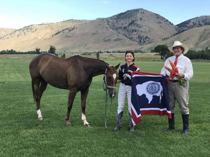 Jackson NYTS Best Playing Pony Thing 2. Owned by Will Mudra, presented by Paul von Gontard.