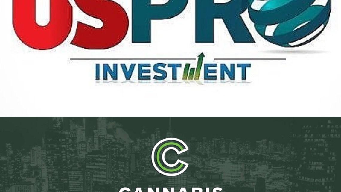 Predicciones de la industria del cannabis hecho por 4 inversores