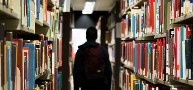 CCR a apărat azi piața liberă a educației