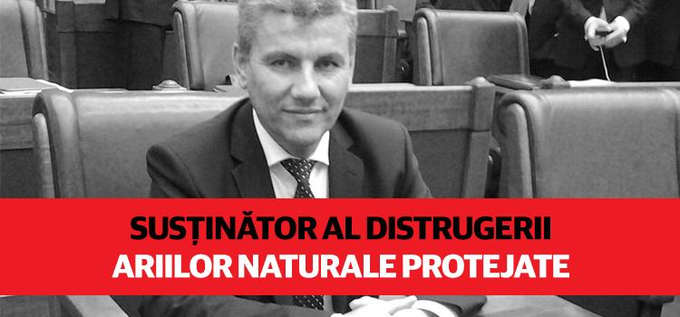 PSD a nominalizat un susținător al distrugerii ariilor naturale protejate la șefia Ministerului Apelor și Pădurilor
