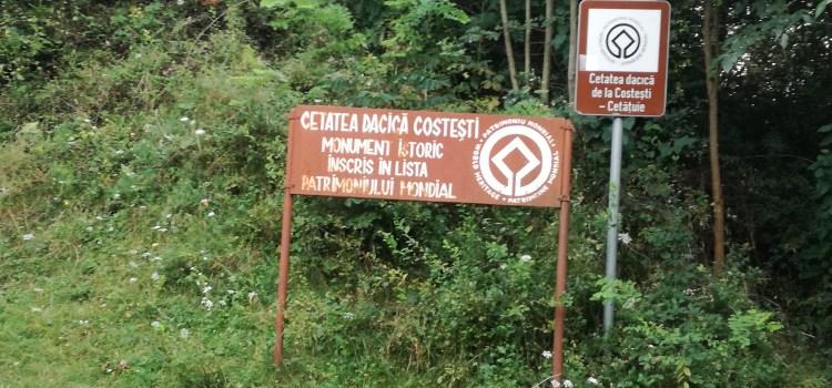 Carmen Dan protejează monumentul istoric Liviu Dragnea, nu cetățile dacice din UNESCO