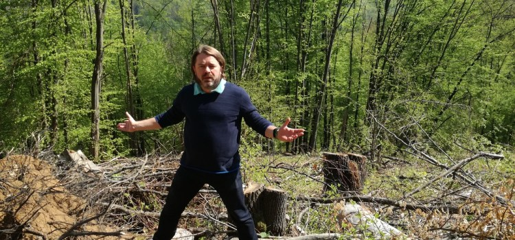Victorie USR pentru mediu! Romsilva, amendată în urma demersurilor senatorului Mihai Goțiu