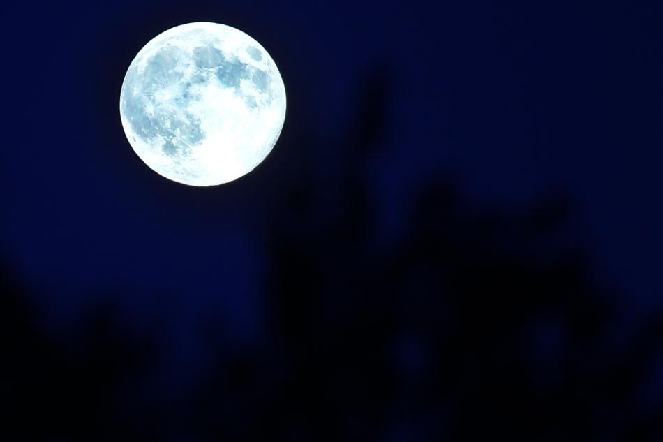 a clear midnight walt whitman