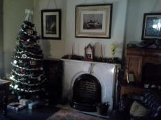 The study fireplace