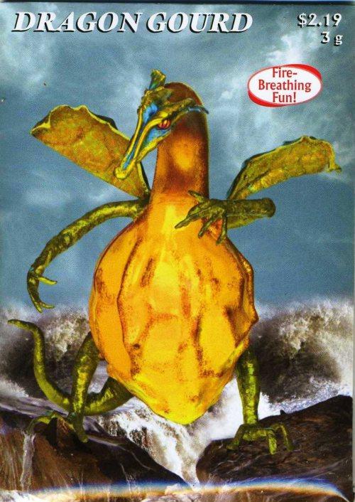 Dragon Gourd Seed