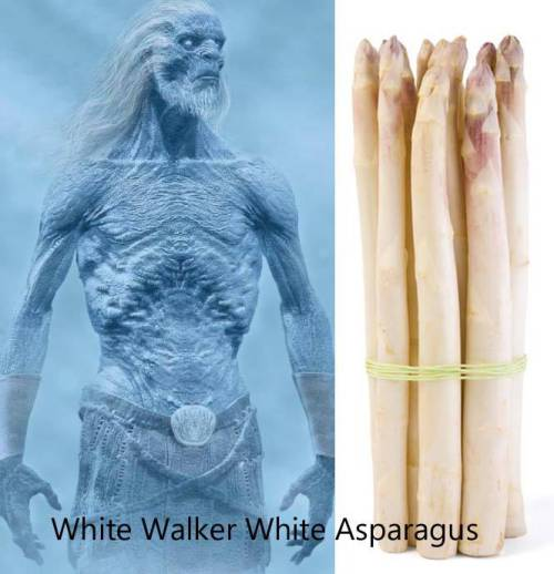 White Walker White Asparagus-by-jessy-randall