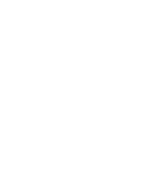 Tactical Solutions logo (white)