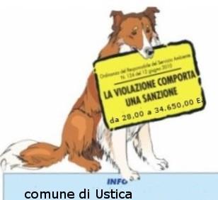 Obblighi per i proprietari e detentori di cani