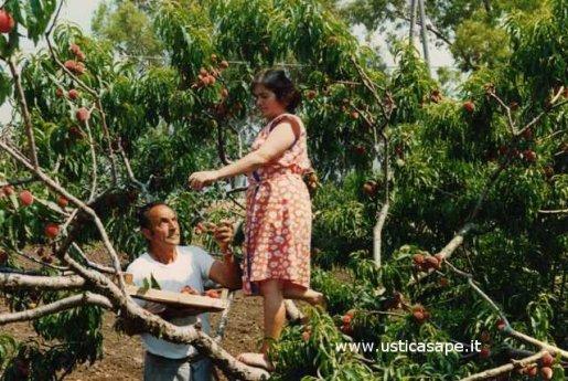 Giulietta (Maria) e Romeo (Nino) raccolgono pesche