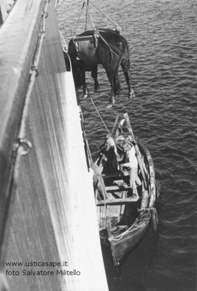 sbarco del toro della discordia