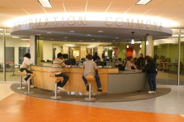 Image result for carlson library toledo