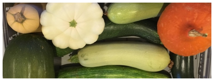 Assortiment de courgettes