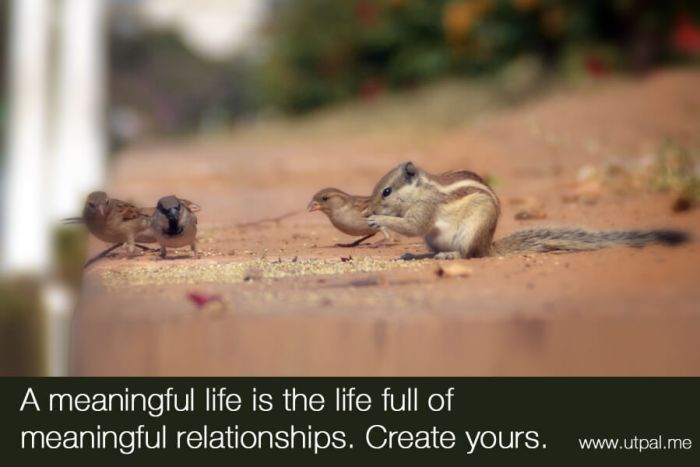 A meaningful life is the life full of meaningful relationships
