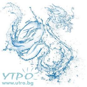 2012 Воден Дракон