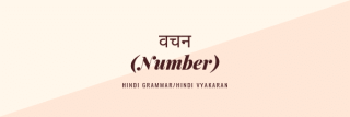 वचन (Number) hindi vyakaran