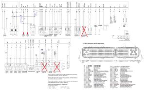 Trooper ECU Wiring Diagram  Members Gallery  UTV BOARD