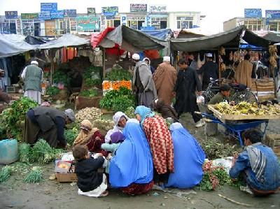 https://i2.wp.com/www.utvet.com/images/afghanistan.jpg