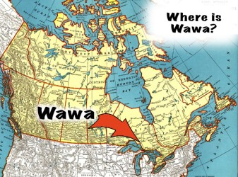 where is wawa