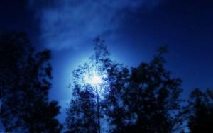 Yalda Night image ©S.Ali.Al Mosawi, licensed under Creative Commons